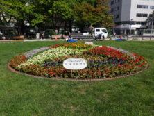 西3丁目東側の北海道新聞のスポンサー花壇