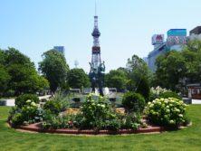 大通公園西3丁目からテレビ塔を望む風景の画像
