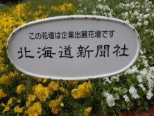 西3丁目の北海道新聞によるスポンサー花壇の看板の写真
