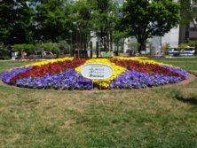 西4丁目のJAバンクによるスポンサー花壇の写真
