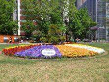 西5丁目の雪印種苗によるスポンサー花壇の写真