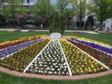 LAバンク様のスポンサー花壇の春の花が植えられている写真