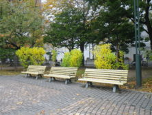 西7丁目北東のベンチの画像