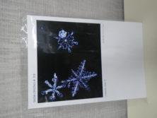 雪の結晶柄のポストカードの画像