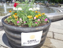 プランター花植えの画像