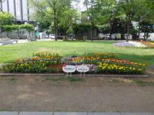 令和元年の花壇コンクール受賞花壇3