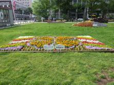 令和元年の花壇コンクール受賞花壇5