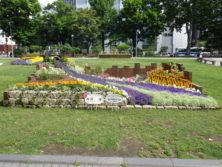 令和元年の花壇コンクール受賞花壇12