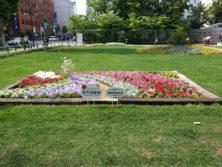 令和元年の花壇コンクール受賞花壇16
