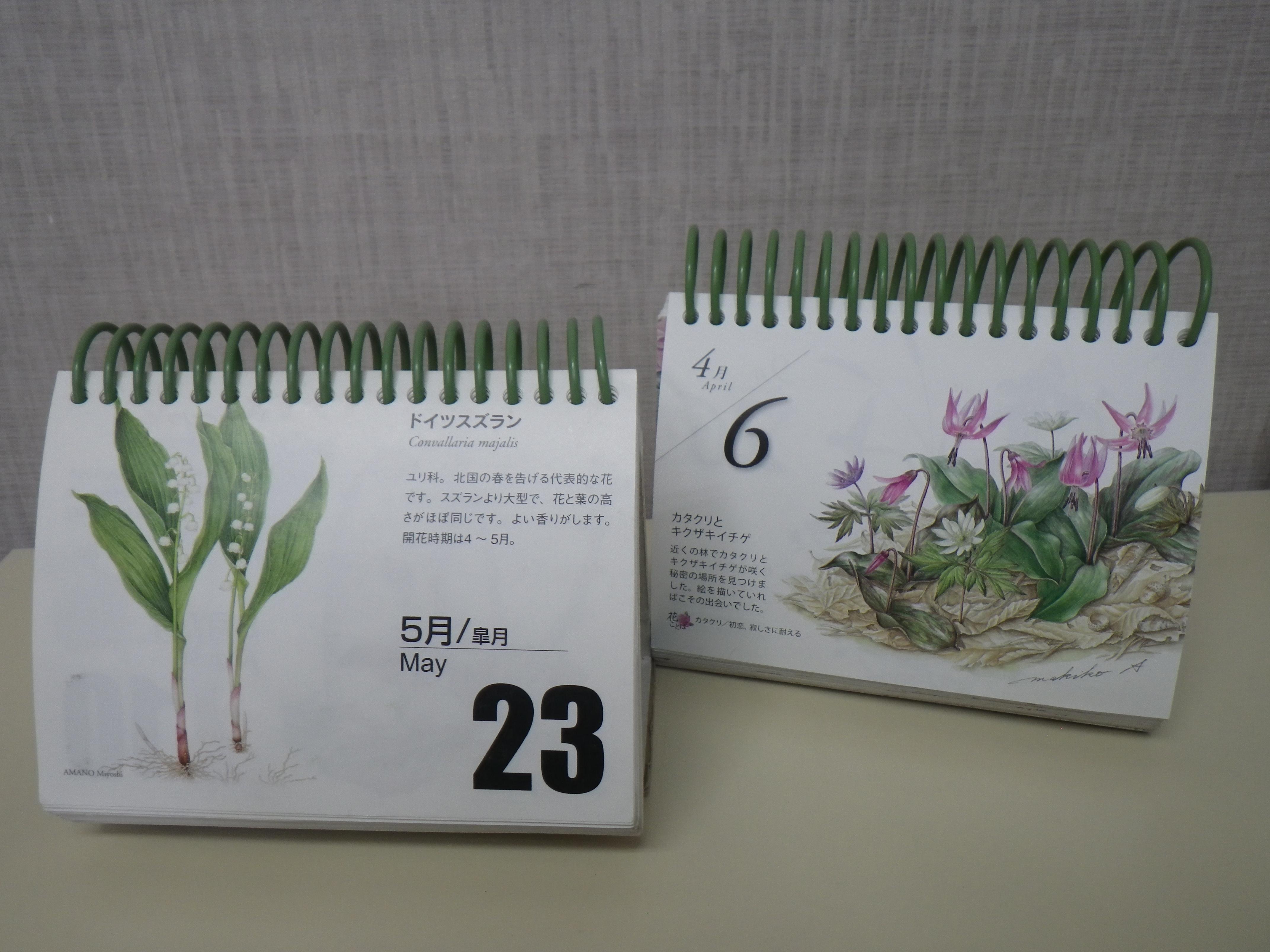 卓上型毎年カレンダー2種の内容の画像