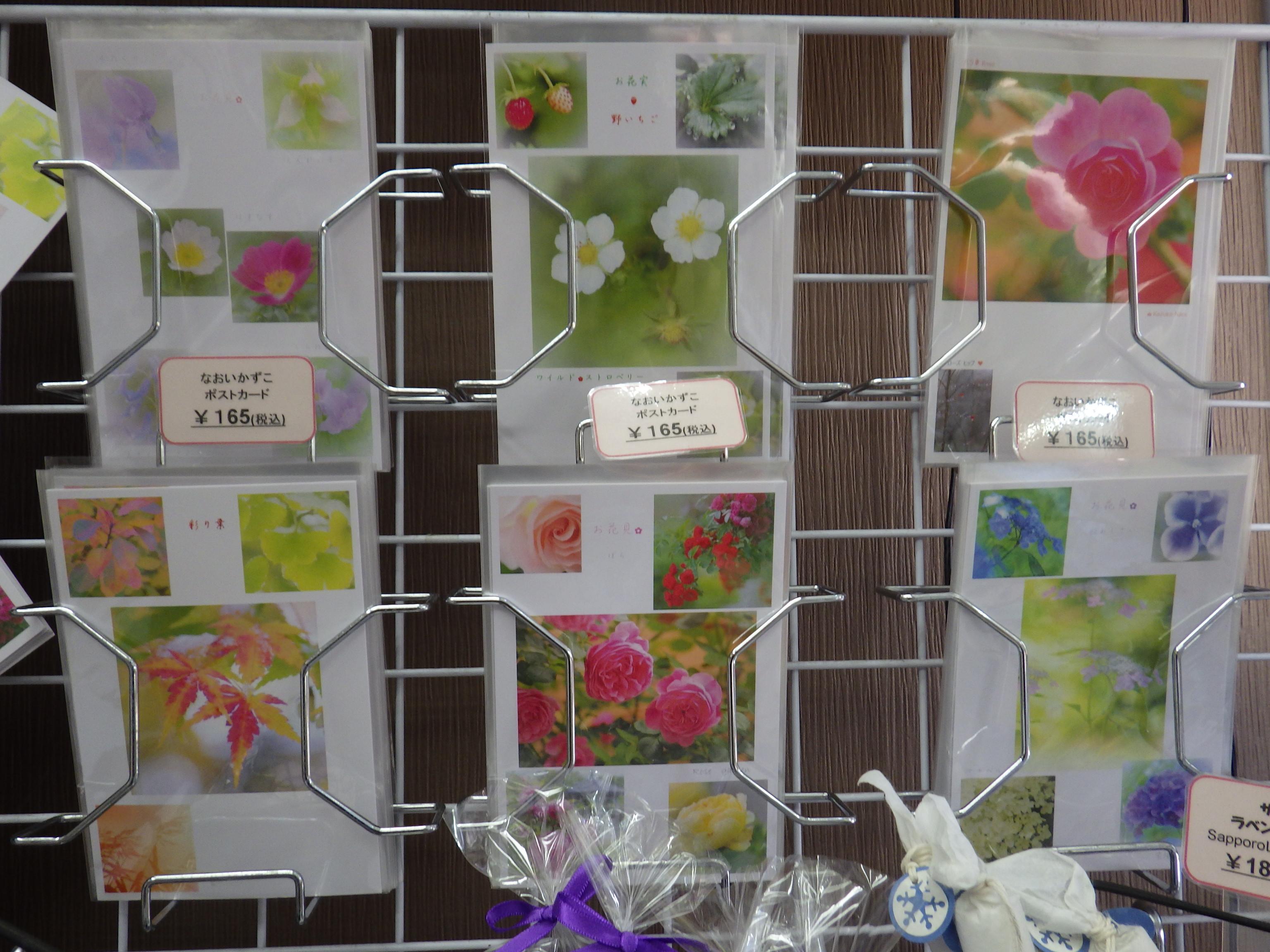 大通公園売店で販売している春のポストカード