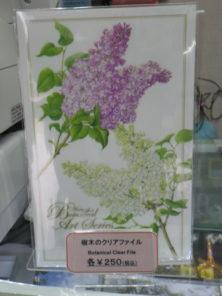 樹木のクリアファイルライラックの柄の画像