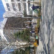 西2丁目北側の冬囲いを外している画像