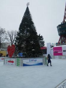スケートリンクで滑るお客様の画像