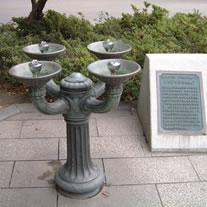 ベンソンの水飲みの画像